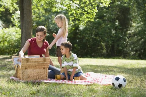 帶小朋友效遊樂趣多,防蚊防蟲需知道